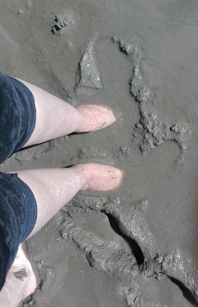 Feet Deep in Wattenmeer